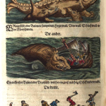 Science Art: <i>Braunfische oder Balenen (Plate 98)</i>, Johann Saur (after Lakas Schan), <i>Fischbuch, das ist, aussführliche Beschreibung und lebendige&#8230;</i>, 1598