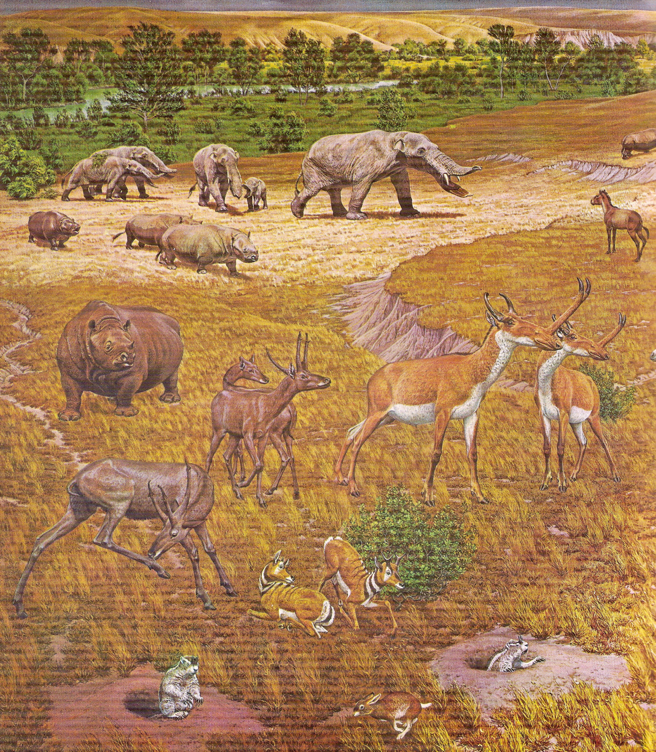 Restoration_of_Pliocene_fauna