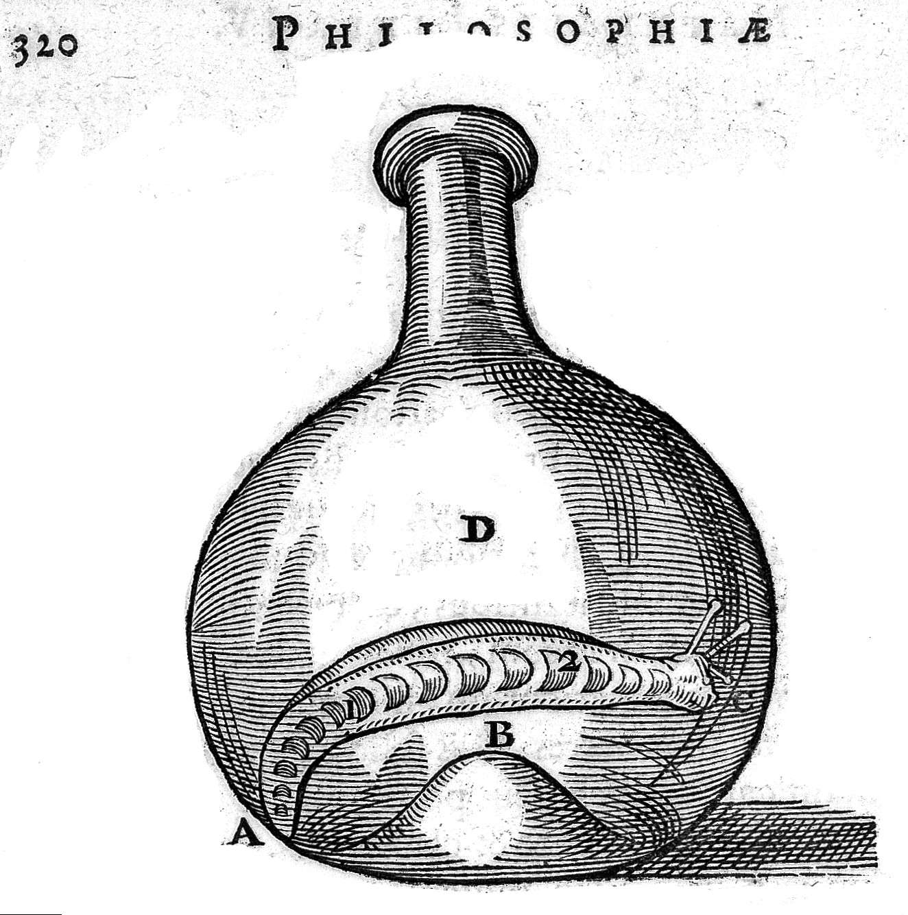 H. Regius proving spirits in the slug, in flask.