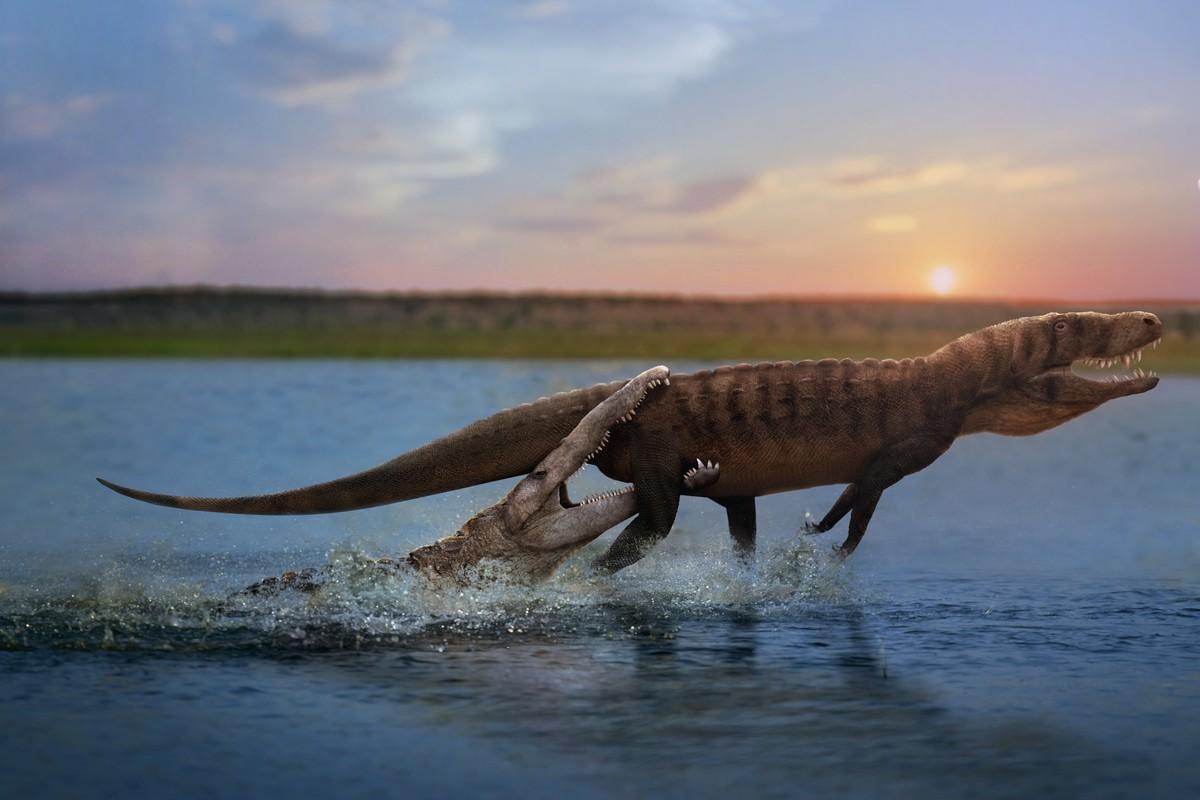 Julio Lacerda's Phytosaur vs Rauisuchian