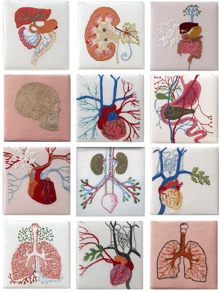 Cecile Dachary's anatomical embroidery
