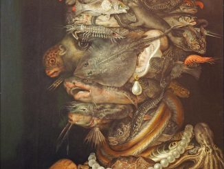 Scientific illustration or, well, painting of Water and marine life as an elemental face