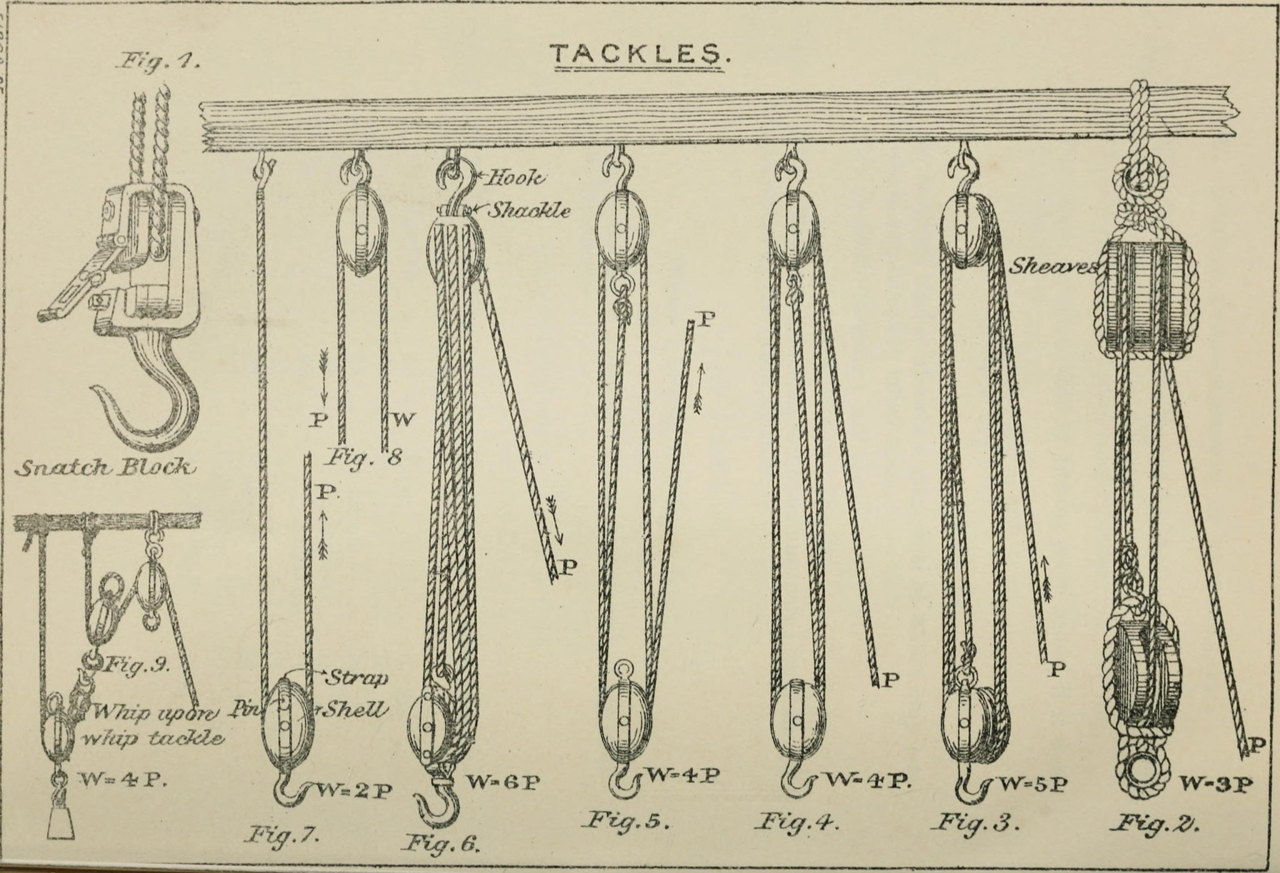 Scientific illustration of pulleys in block and tackle arrangements, increasing mechanical efficiency.