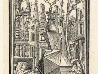 Scientific illustration of three-dimentsional solids, illustrating geometric ideas in an Early Modern woodcut.