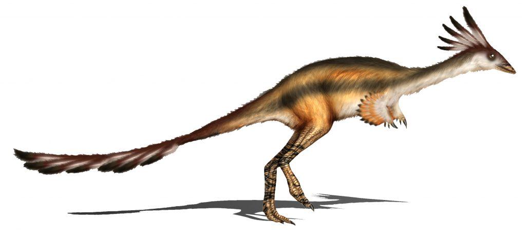 Science Art: Alvarezsaurus calvoi, <i>Reconstruction</i>, by Karkemish.