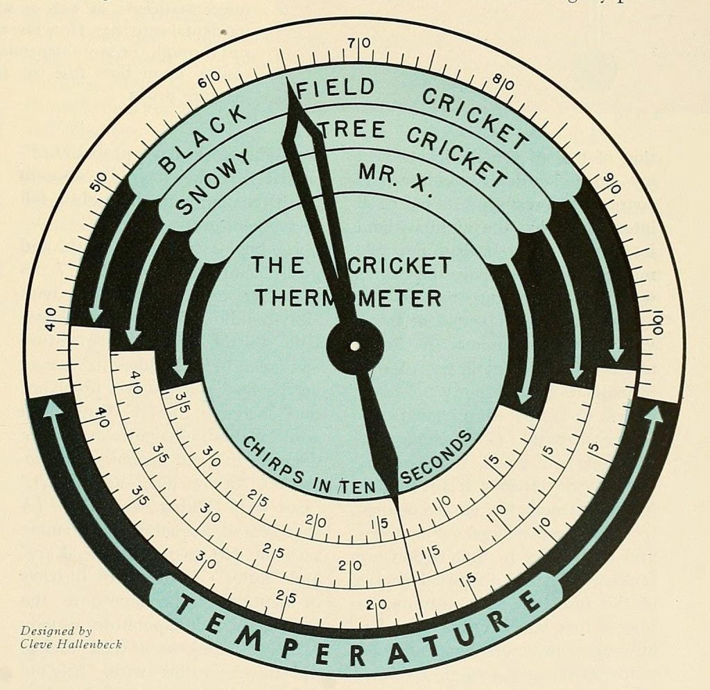 Science Art: <i>The Cricket Thermometer</i>, by Cleve Hallenbeck.